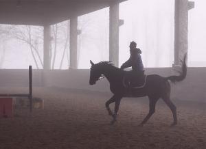 istruttore-cavallo2