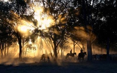 benessere a cavallo