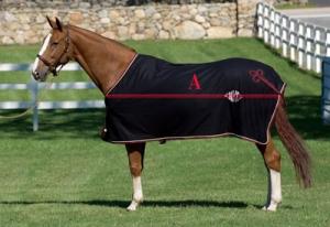 guida alla scelta della coperta per cavallo