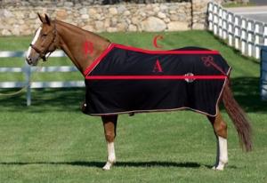 coperta per cavalli misure