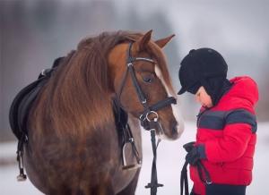 maneggio provincia di lodi corsi di equitazione
